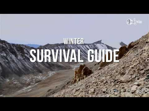 Winter Survival Guide in Ladakh From a Local