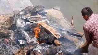 Cremazione del cadavere di un uomo anziano in riva al fiume Bagmati a Kathmandu, Nepal
