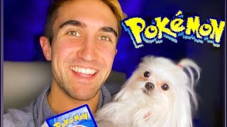 Give Pokémon Card to Dog??? #Shorts