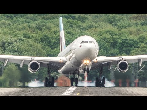 AIRBUS A380, A340, A330 CROSSWIND LANDINGS and a RABBIT on the runway (4K)