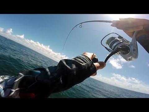 Fishing CLEAR Ocean Water For GIANT Fish - Aquarium Fishing