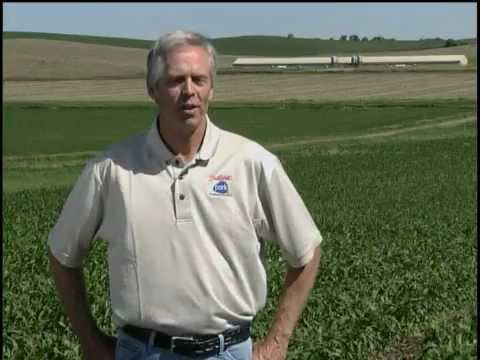 Meet Doug Wevik: A Hog Farmer from Beresford, South Dakota