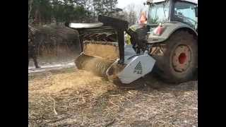 FENDT 936 425 PS + MULCZER FAE UMH 250