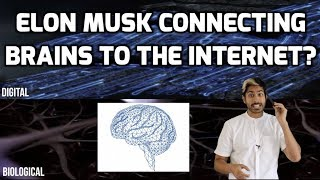 Why is Elon Musk Connecting Brains to the Internet?