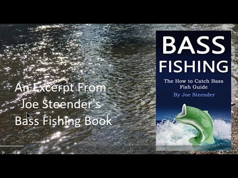Bass Fishing The How To Catch Bass Fish Guide