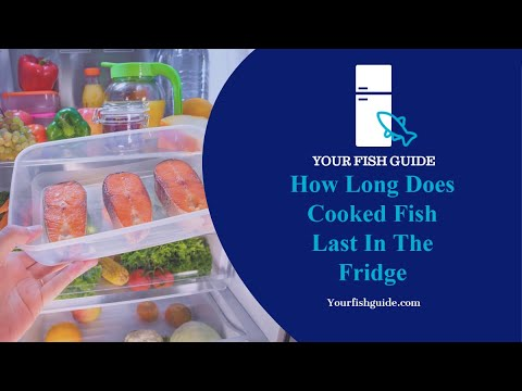 How Long Does Cooked Fish Last In The Fridge? - YouTube