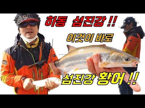 하동 섬진강 황어 루어, 플라이 낚시(부산에서 하동까지 5부)