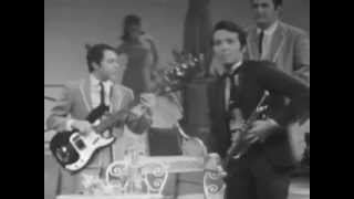 Repeat youtube video Herb Alpert & The Tijuana Brass - Spanish Flea