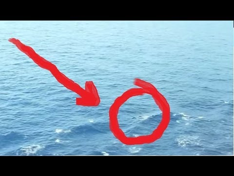 Mermaid Caught On Tape Amazing Footage Youtube
