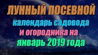Смотреть видео Лунный календарь садовода огородника на январь 2019