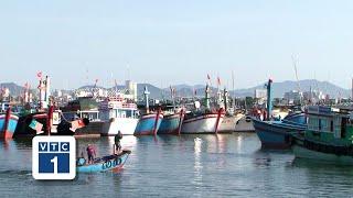 Ngư dân lao đao vì tàu không đủ dài phải nằm bờ