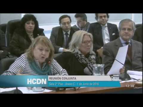 Susana Malcorra - respuesta a Kicillof en reunión conjunta de Rel. Exteriores - Mercosur