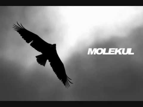 MOLEKUL - HAWA