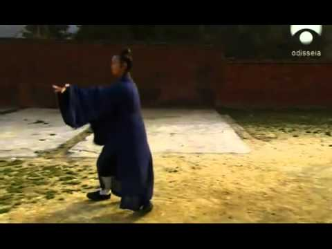 Medicina Tradicional China Documental 4/4