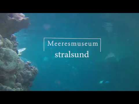 Meersmuseum Stralsund  2018 - short Video ?????????