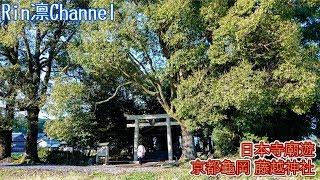 【台湾人】「台湾人」#台湾人,【日本寺廟遊】京...