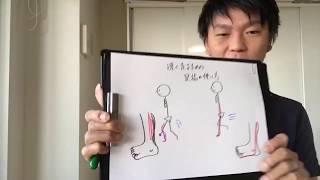 速く走るための足指のトレーニング方法 マラソンタオル 検索動画 22