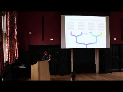 Hybridisation and Evolution: Simon Martin
