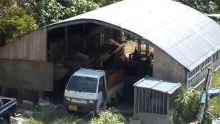 アパートの前のヤギ小屋(沖縄)です。 夏前から、1匹か2匹、夜中も鳴い...