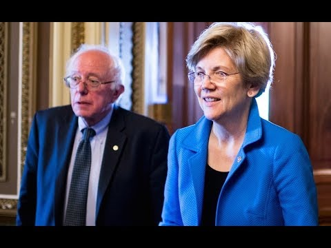 Elizabeth Warren Tells Democrats To DITCH Centrist Talk And Support Single Payer And Free College