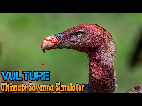 Ultimate Savanna Simulator #Vulture By Gluten Free Games Action & Adventure iTunes/Android