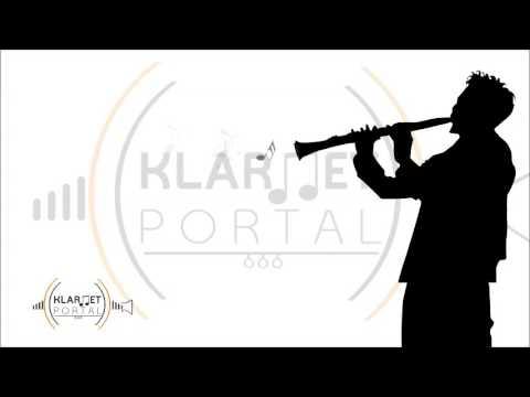 Serkan Çağrı & Sıla - Seni Görmeseydim Klarnet Cover