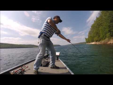 Quabbin Fishing Area One 06/15/2017
