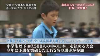 張本智和小学校時代の全農杯で敵なし最速で10分で試合終了 thumbnail