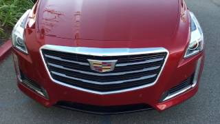 Cadillac CT 6 Paint Correction by Lunaz™ Shine | DP Tint