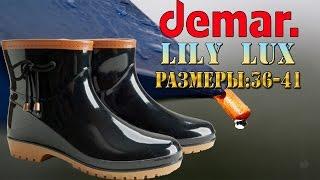 Женские резиновые сапоги Demar Lily LUX. Видео обзор от STEPIKO.COM