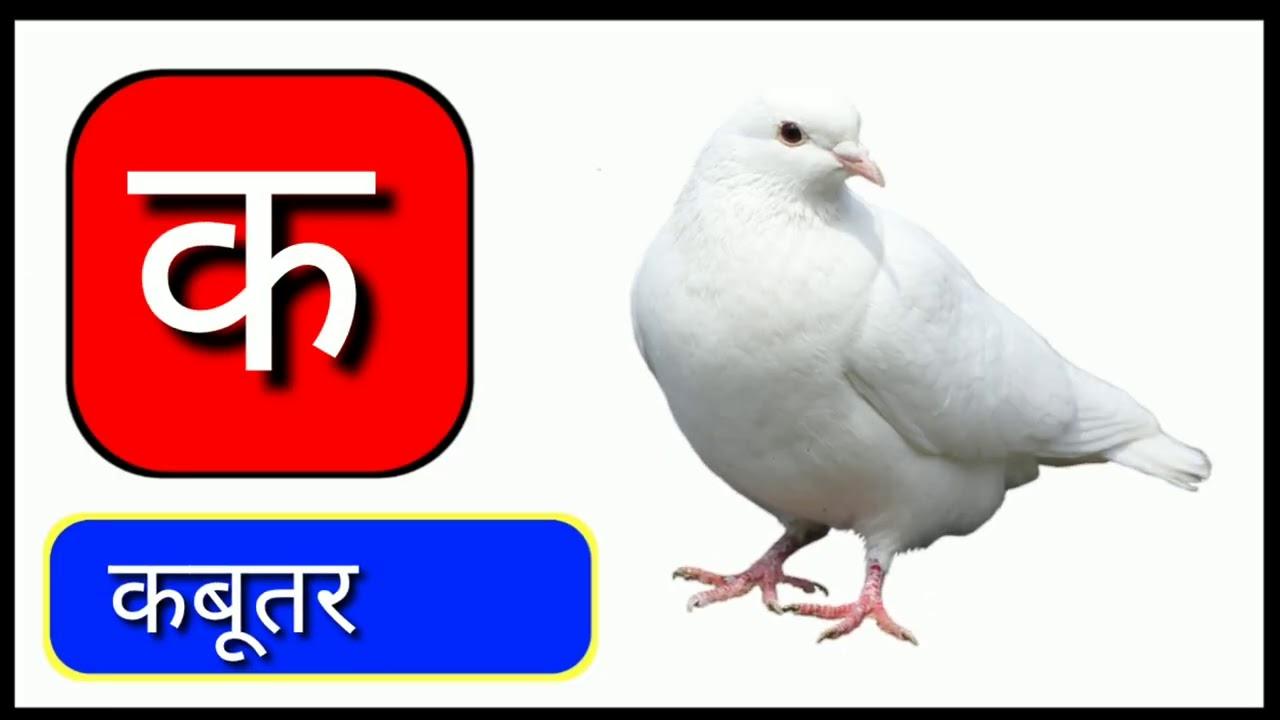 part 28, ka se kabutar kha se Khargosh, Hindi varnamala, aise anar aa se aam, क से कबूतर क से खरगोश