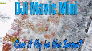 DJI Mavic Mini | Can it Fly in the Snow?