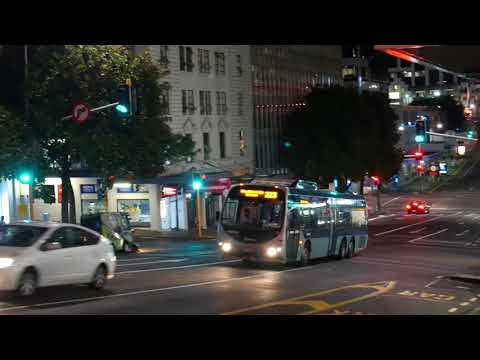 Auckland City at Night | Part 1