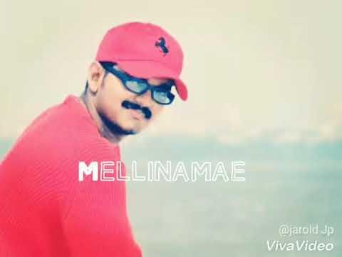 Mellinamae mellinamae | Thalapathy love song