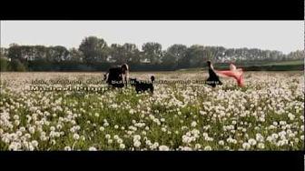 Deutsche Filme Mit Deutschem Untertitel Kostenlos