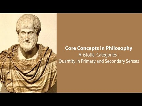 Aristotle on Quantity in Primary and Secondary Senses (Categories, c.6) - Philosophy Core Concepts