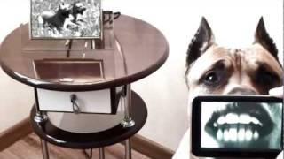 Собаки тоже люди [ЭПИЗОД 6]