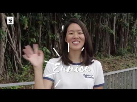 Meet our new Panda Ambassadors - Eunice & Tiffany! | WWF-SINGAPORE