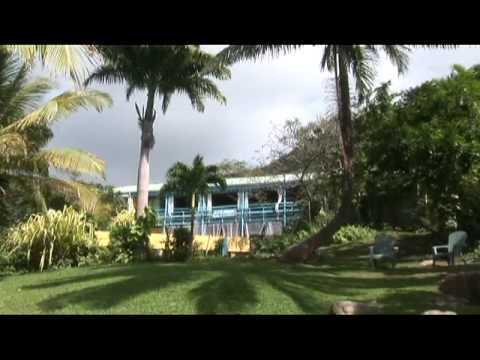 Montserrat  British West Indies , Royal Palm Club..For Sale