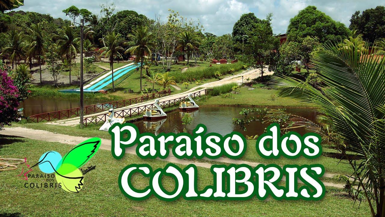 paraiso dos colibris youtube