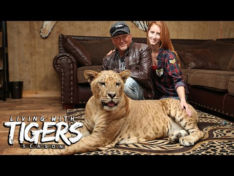 The Man Who Bought Joe Exotic's Zoo   LIVING WITH TIGERS SEASON