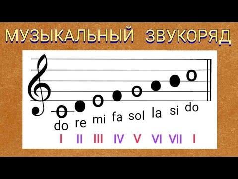 Видеоуроки: Игра на фортепиано и синтезаторе для начинающих
