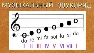 Сольфеджио. Урок 1. Музыкальный звукоряд