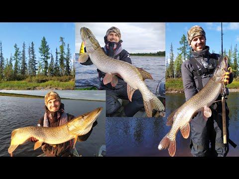 Cеверные щуки, бешеный клёв и приключения на Ямале - ч1. Crazy Pikes, Crazy Fishing Russia Yamal  P1