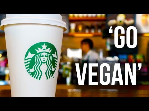Amsterdam Starbucks Tells Customers to 'Go Vegan'