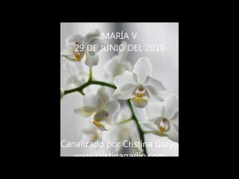 CANALIZACIÓN MARÍA V