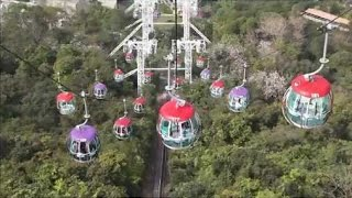 Ocean park  | Hong kong tourist attractions