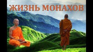 Вьетнам 2018: Как живут БУДДИЙСКИЕ МОНАХИ? Superdong на острова Кон Дао
