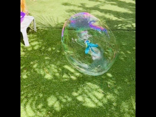 🔮Plumy X Bubble 🧼