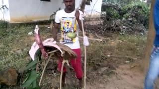 BAMRA SAMBALPURI HD VIDEO
